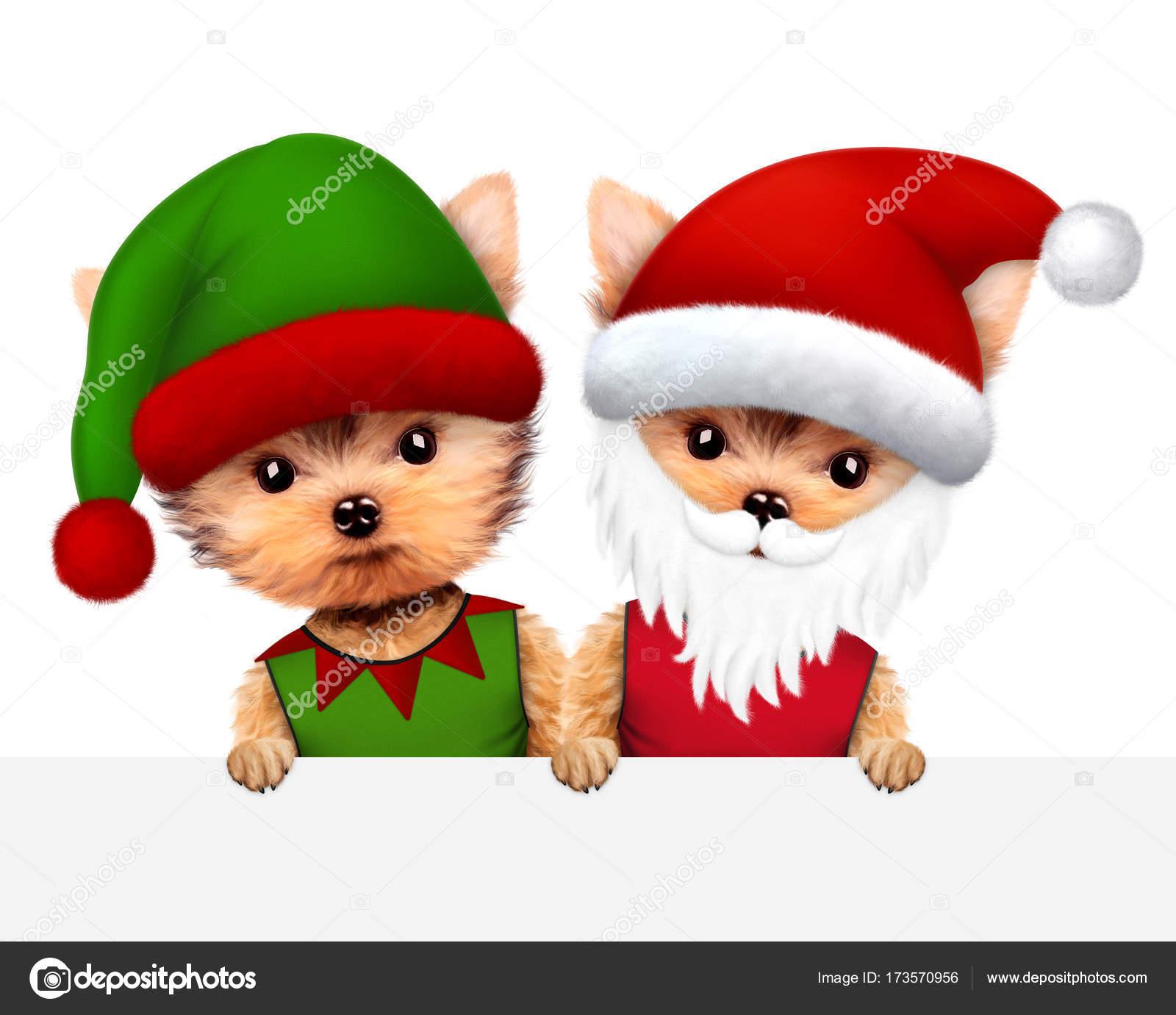 Funny Dog Santa And Elf Christmas Concept Stock Photo