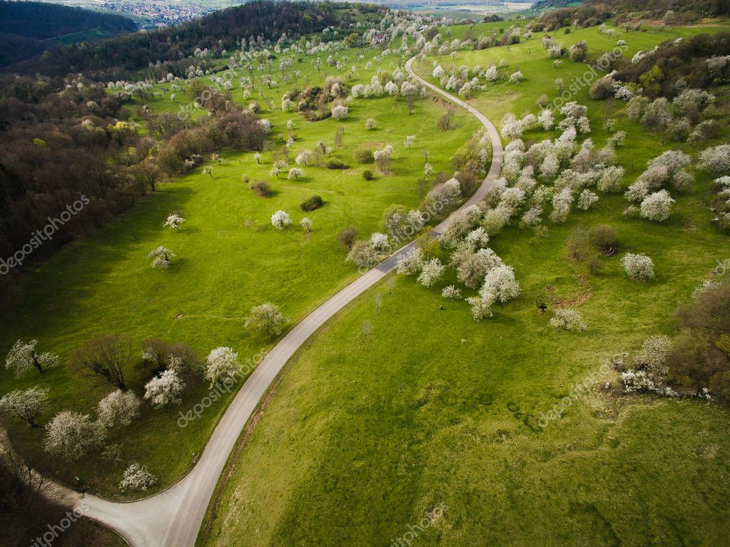 Aerial view of green hills with trees and road, Germany