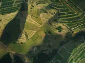 full-frame lövés, mezőgazdasági területek és a dombok, a madár-szem kilátás, Európa
