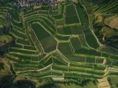 plnoformátový záběr zemědělských polí z ptačí perspektivy, Evropa
