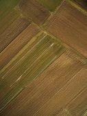 vista aerea di righe di campi agricoli, Europa