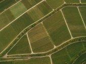 Fotografie ptačí pohled zelených zemědělských polí, Evropa