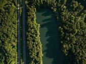 Fényképek erdő és tó