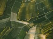 Fotografie agro fields