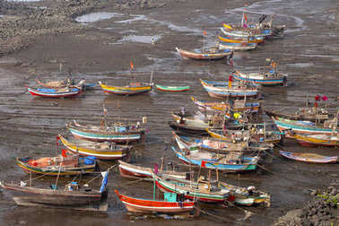 Boats docked in yard, Diveagar, Maharashtra