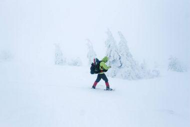 Climber struggling winter blizzard in Gorgany mountains stock vector