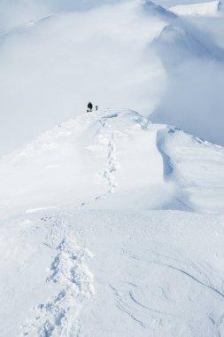 climbers on peak