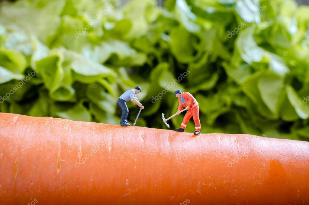 miniature people worker digging into the carrot