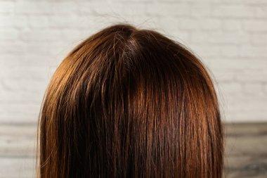 Detail on natural dark brown woman hair see from behind.
