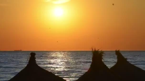 Idyllic sunrise at seaside, straw umbrella silhouette on beach, time lapse