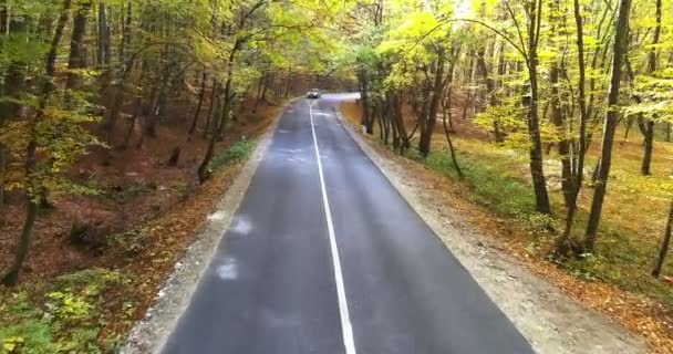 Letecký pohled na křivolaké cesty v lese, podzimní den