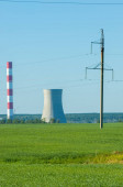 Poles for electricity supply