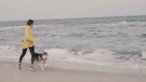junge schöne Frau im gelben Pullover spielt mit einem Hund (graue und weiße Huskys) am Strand