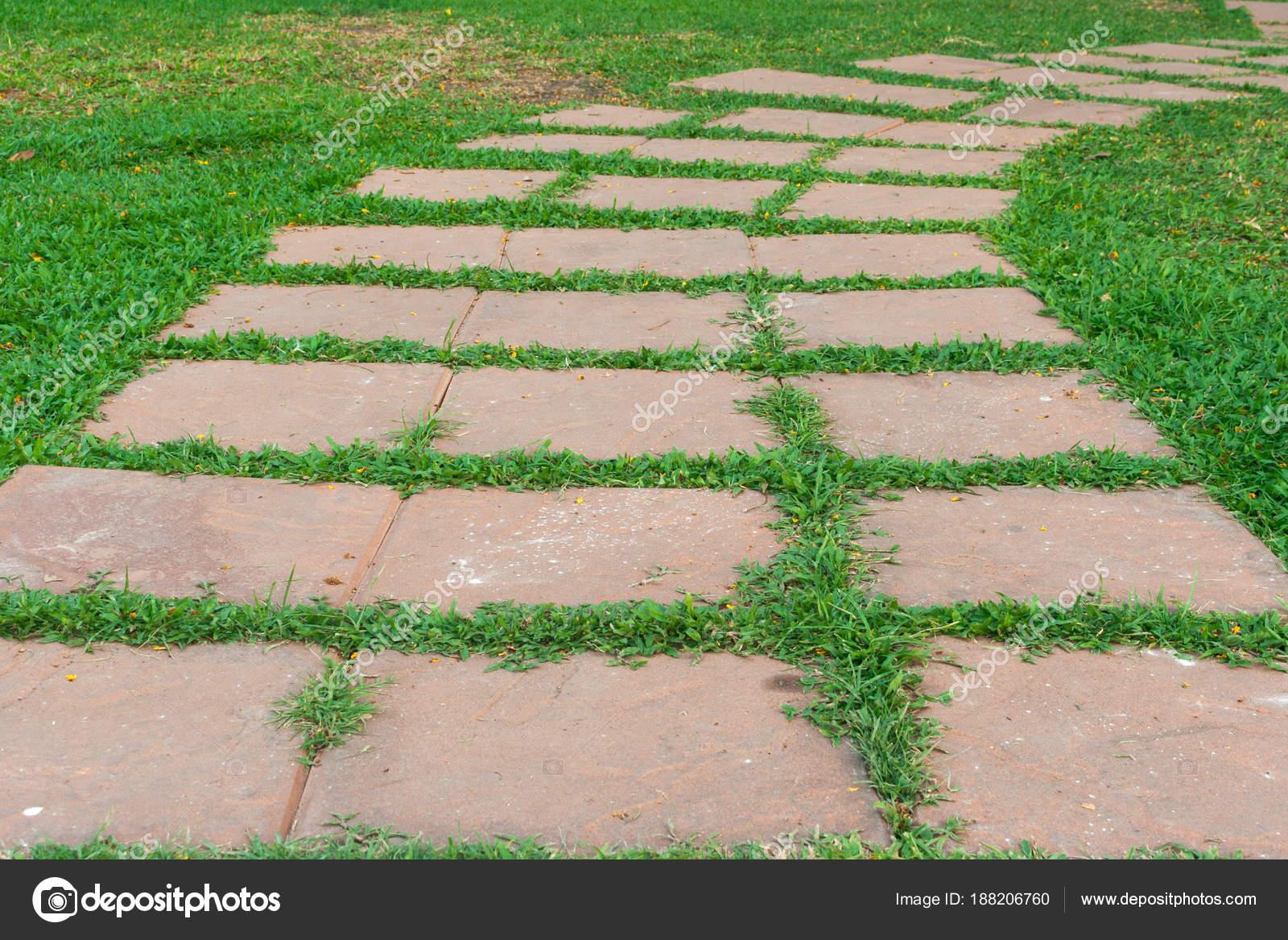garten stein weg mit gras wächst zwischen den steinen — stockfoto