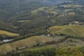 Fotografie Malebný pohled vinic, Gaiole in Chianti, Toskánsko, Itálie