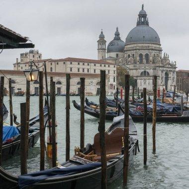 Gondolas in Grand Canal with Santa Maria Della Salute in the background, Venice, Veneto, Italy