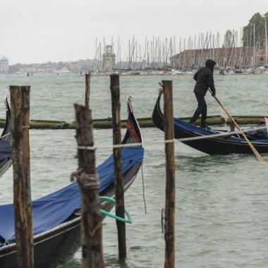 Gondolier rowing gondola in Grand Canal, Venice, Veneto, Italy