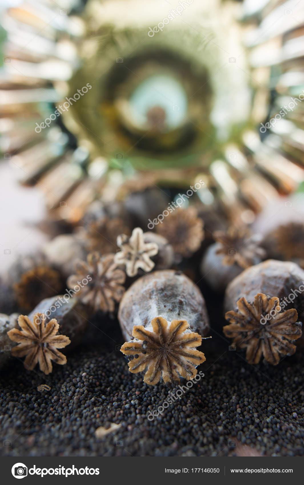 Dry Poppy Capsules And Black Seeds Macro Stock Photo