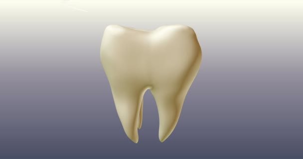 Tooth whitening procedure. Teeth care products active action. 3D animated commercials.