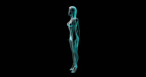 3D vizualizace ideální ženskou postavu. Krásné sexy tělo zjištěným sportovní trénink nebo cvičení fitness