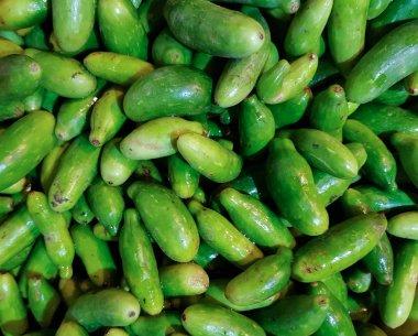 kundru kudri pile in vegetable market for sale