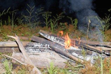 Ormanın ortasında Yakılan ateş.