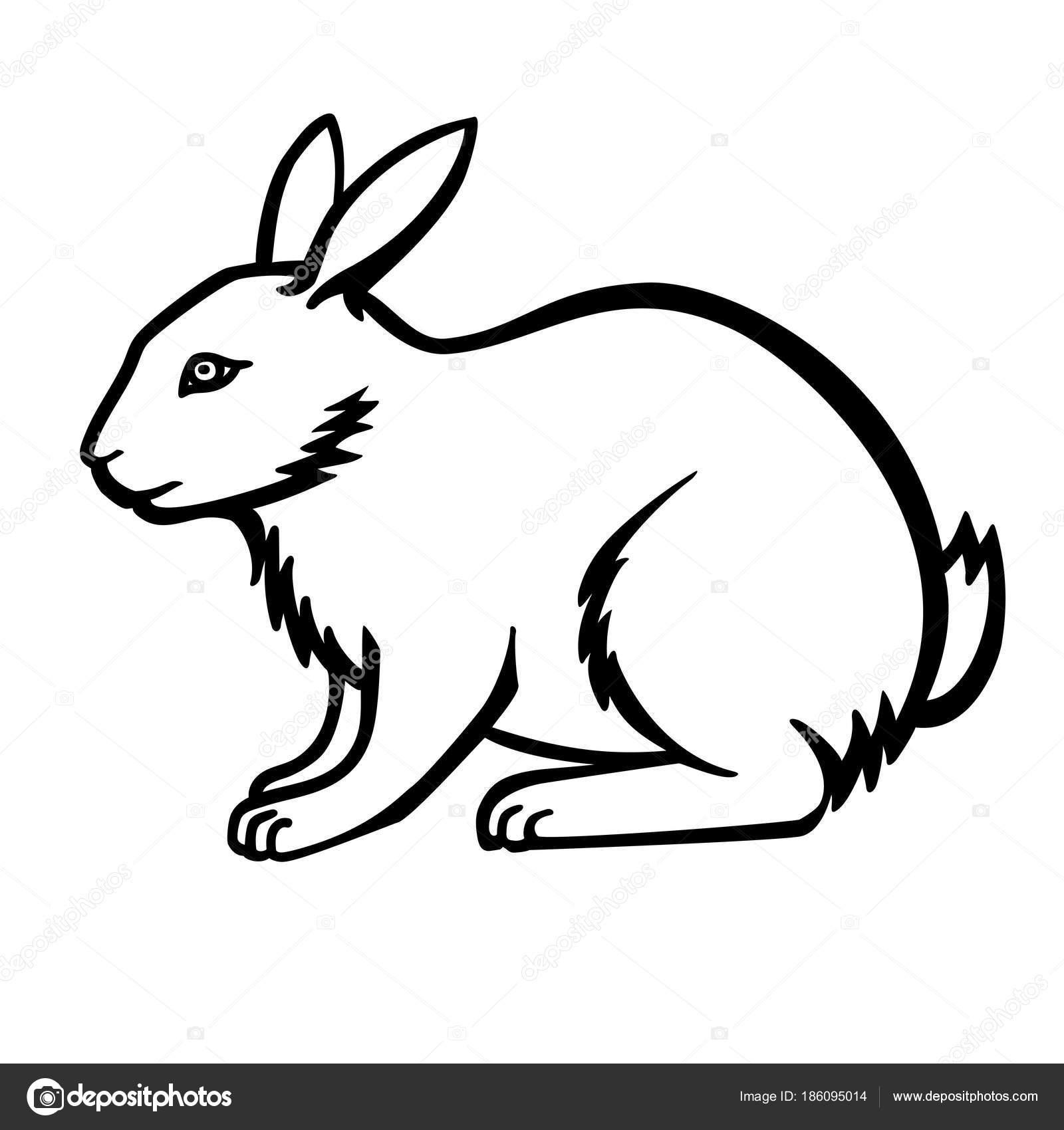 Conejo Dibujo Lineal Conejito Plantilla Para Colorear — Vector de ...