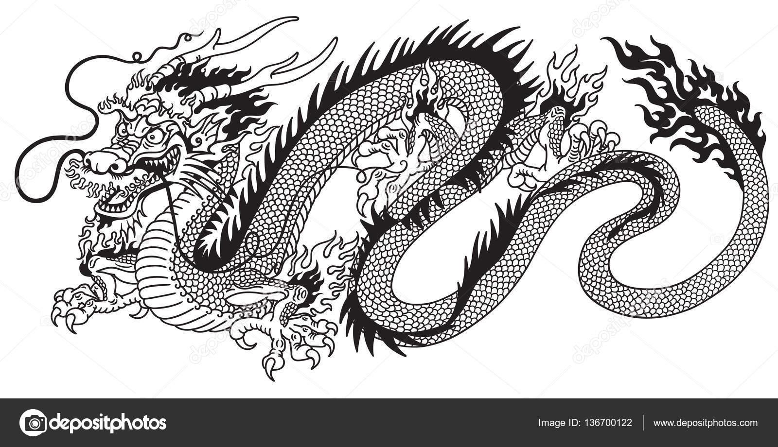Imágenes Dragón Chino Dibujo Dragón Chino Blanco Y Negro Vector
