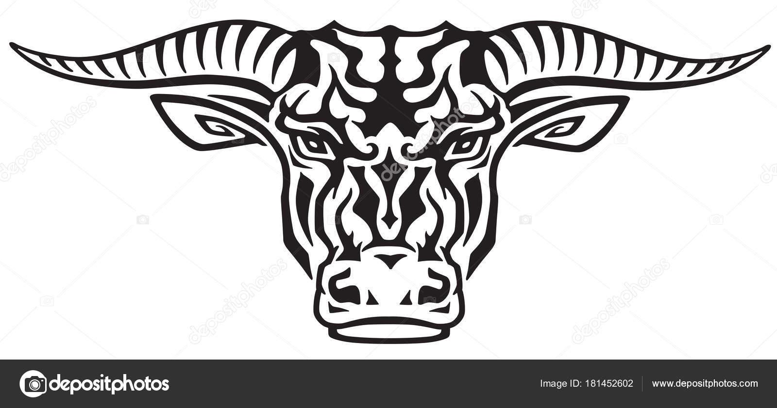 cabeza toro tauro ilustraci u00f3n vista frontal del tatuaje