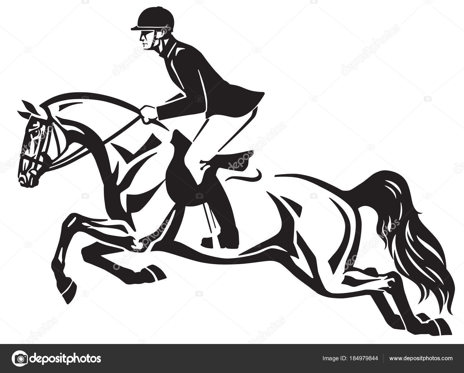 Horse Rider Jumping Fence Equestrian Stadium Showjumping Black White Side Stock Vector C Insima 184979844