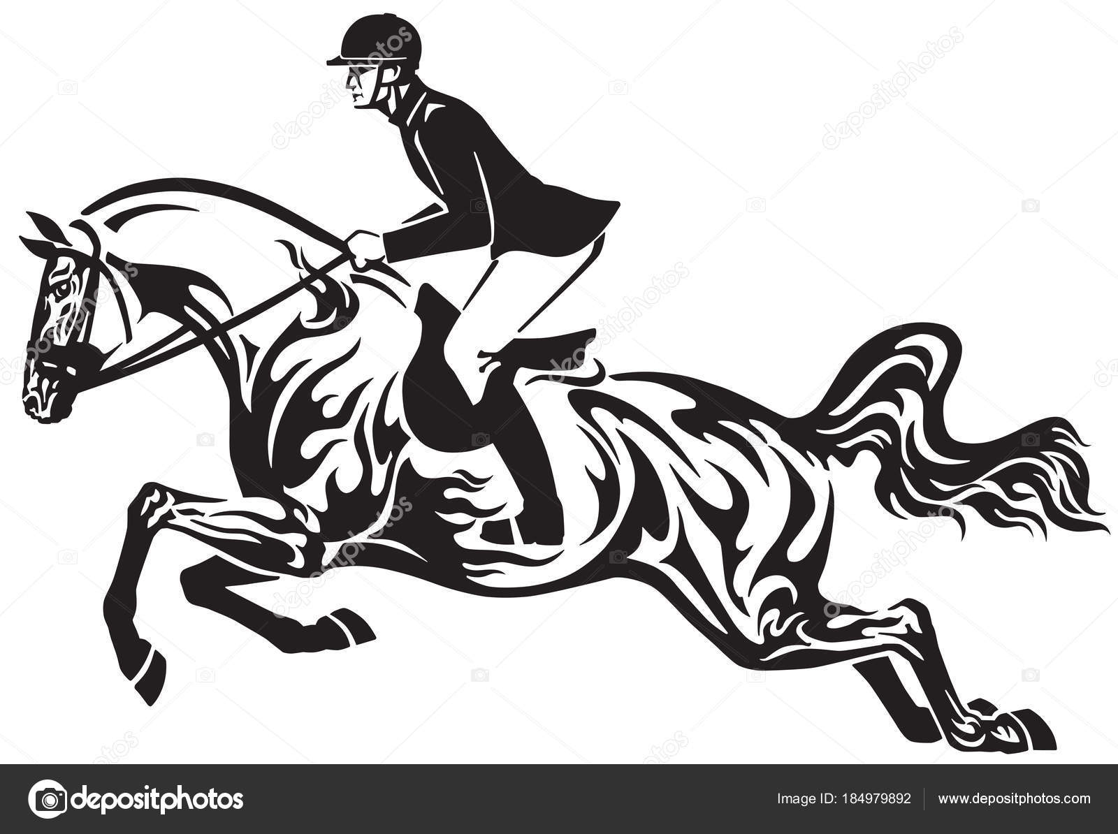 Horse Show Jumping Equestrian Sport Competition Horseman Rider Controls Horse Stock Vector C Insima 184979892