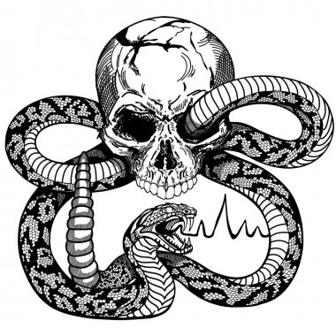 Human skull and snake. Black and white tattoo