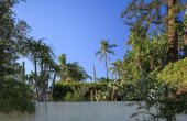 Fényképek A Santa Barbara hátsó kert