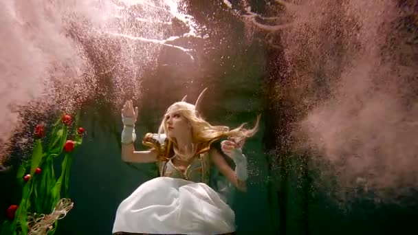 Neuvěřitelný podmořský svět s elf
