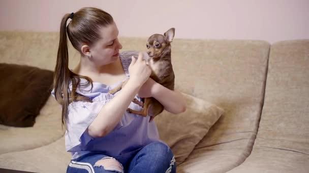 Krásná pro dospělé žena mazlení s trochou pes sedí na gauči vnitřní