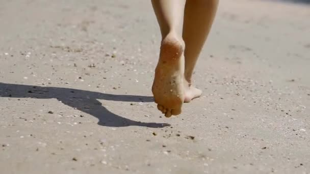 bare legs of young girl is walking on a sandy beach, back view, travelling in tropical countries