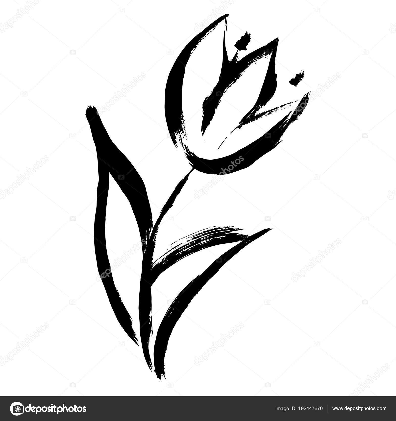 Vektör çizim Boya Lale Bahar çiçek Stok Vektör Osbkin 192447670