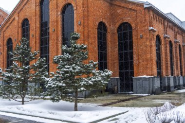 Pine trees in snow against a brick building