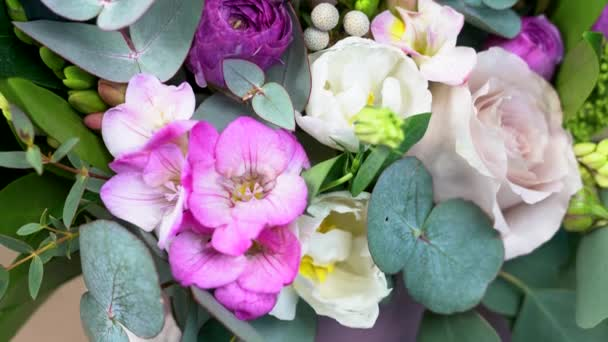 Very close view white rose violet colored flowers them roses stock very close view white rose violet colored flowers them roses stock video mightylinksfo