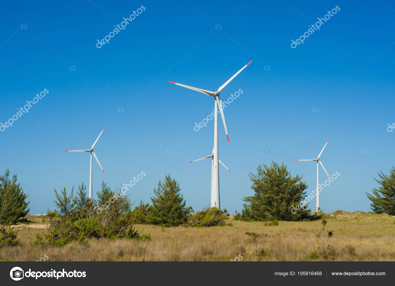 Great Concept Renewable Sustainable Energy Wind Field Wind