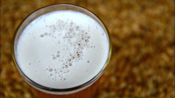 Tmavé ležákové pivo nalít do skla na stůl se sladovým zrnem