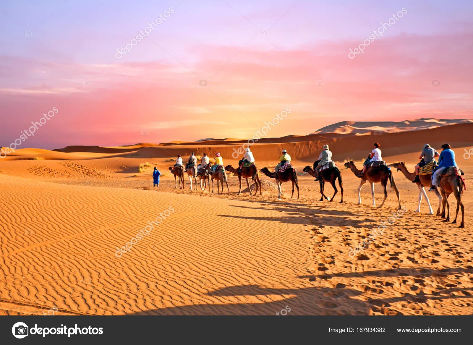 https://st3.depositphotos.com/1640238/16793/i/1600/depositphotos_167934382-stock-photo-camel-caravan-going-through-the.jpg