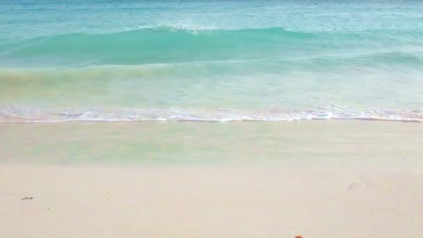 Onde tropicali sullisola di Aruba nel Mar dei Caraibi