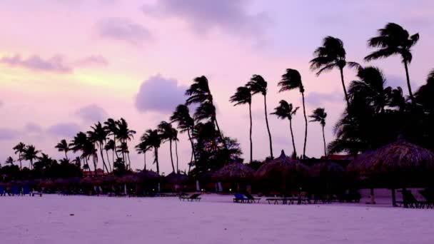 Tramonto viola su Manchebo beach sullisola di Aruba nel Mar dei Caraibi