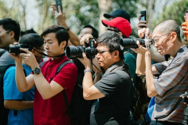 Singapore, March 2018: photographers take pictures of Anime and Manga characters for Sakuta Matsuri in the Flower Dome within Gardens by the Bay in Singapore.
