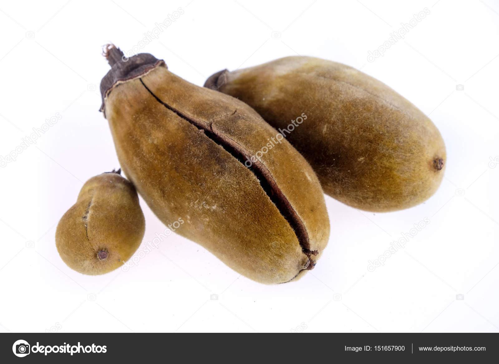 Baobab Frucht Auf Weissem Hintergrund Stockfoto C Nattapol 151657900