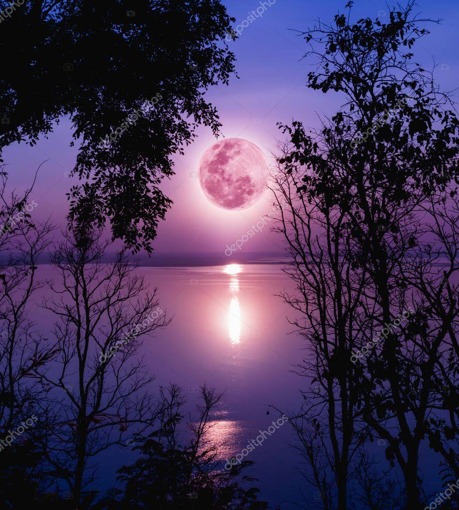 Resultado de imagen para luna imagenes hermosas