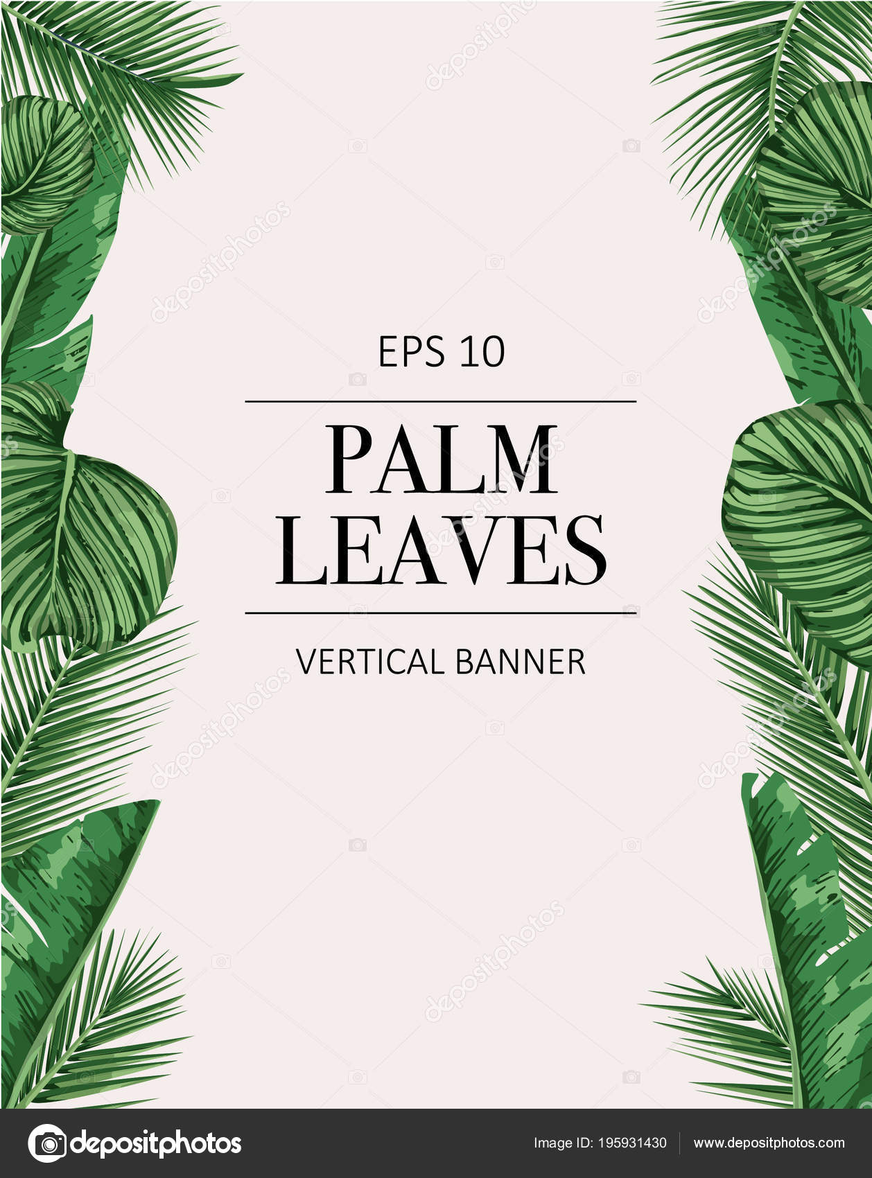 Palm Tree Leaves Background Template Tropical Greeting Card Stock
