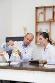 Tým fyzioterapeutů diskusi plastikový model páteře