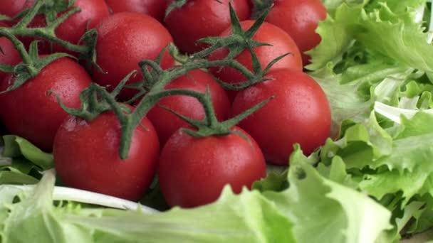 Čerstvá zelenina. Mytá cherry rajčat s kachnou po